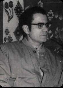 bradescu1