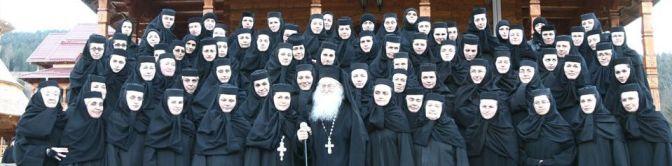 manastirea_paltin5_web
