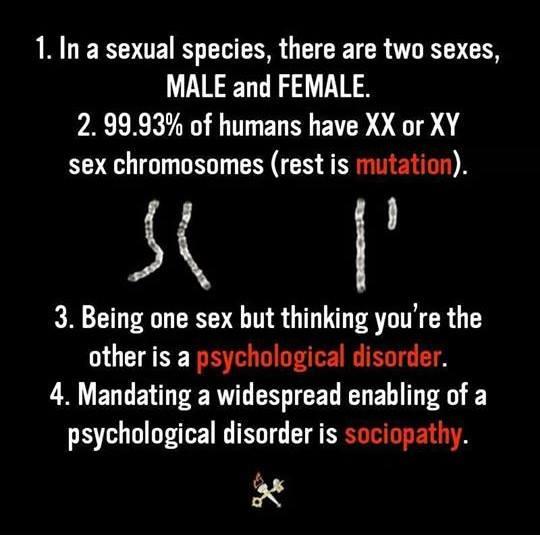 mic manifest despre gen
