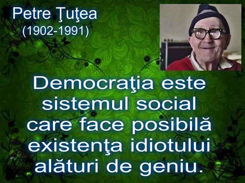 tutea-132