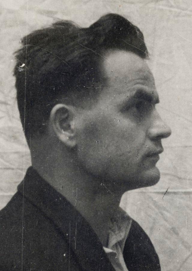 ioan-negrutiu-in-arest-profil