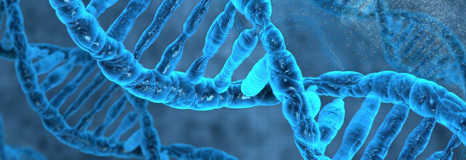 adn Biochemistry